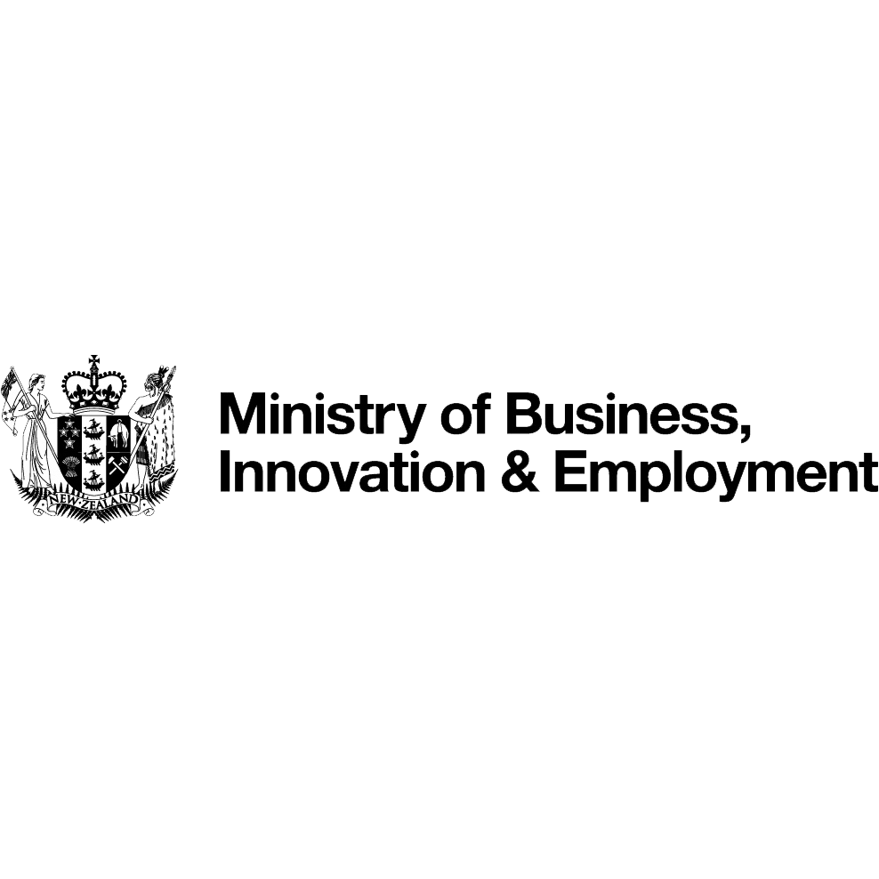 analyst  ministry of business  innovation  and employment