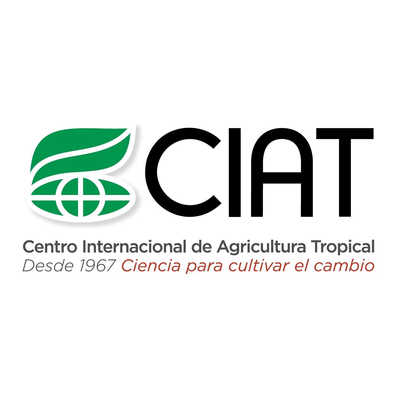 Statistician International Center For Tropical